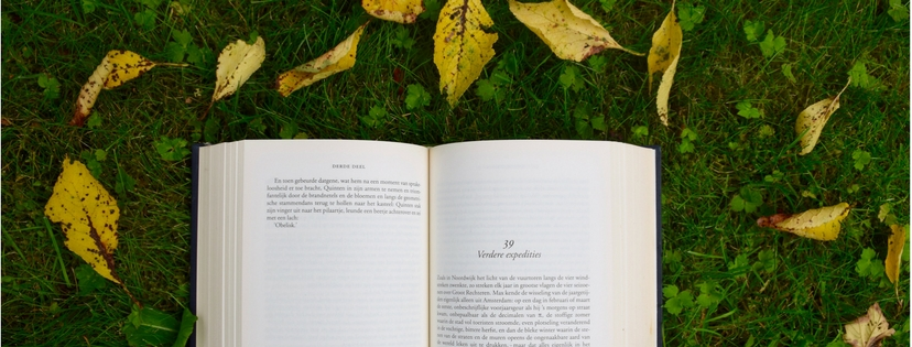 Great Books About Writing {Day 16 :: Read}