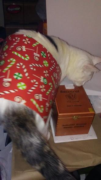 baccarat-box-cat-three