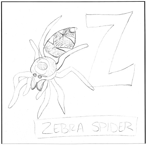 z-is-for-zebra-spider