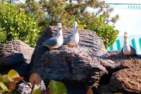 Seagulls at The Seas Pavilion