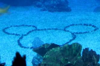 Underwater Mickey Head