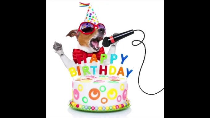 Make Your Dog Or Cat Sing Happy Birthday Song Video By Hinhuk Fiverr