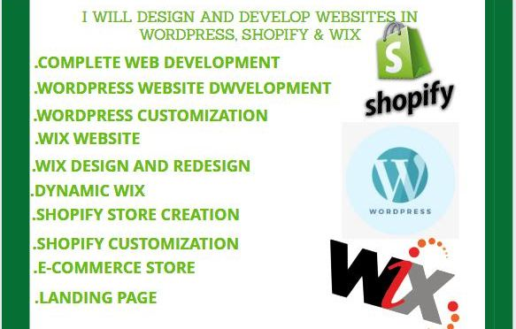 I will build a stunning shopify wix worpress website