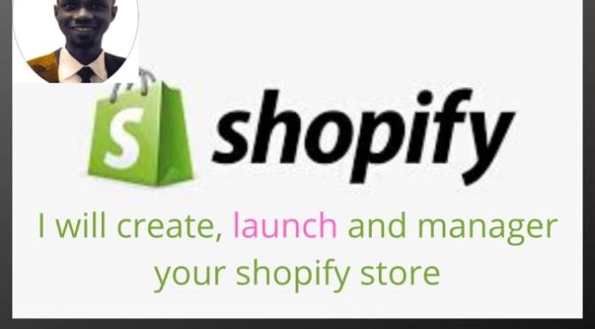 I will setup, design and manage your profitable shopify store