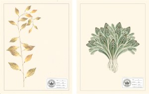 Drawings of Fantastical Flora Adapted from Advertising