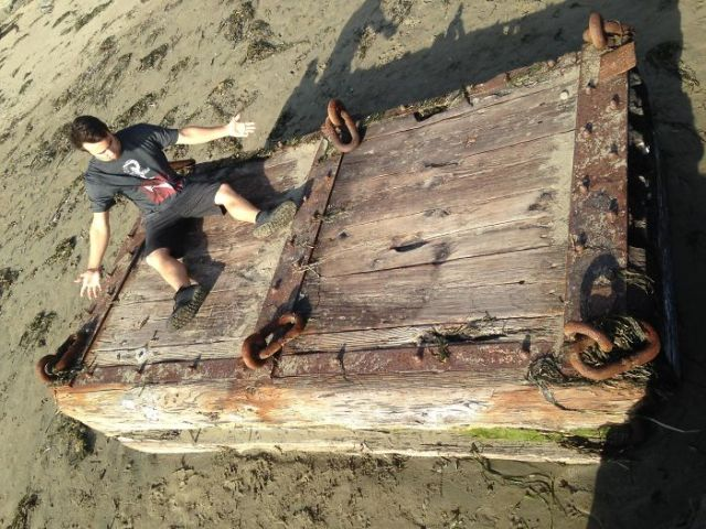 Found Washed Up On Dillon Beach, California USA. Human For Scale, I'm 5'10