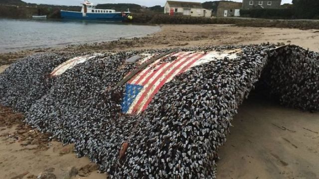 Falcon 9 Rocket Is Found In The UK Shores