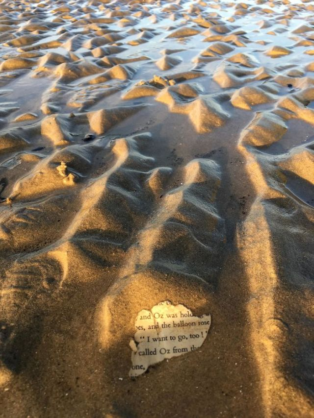 Found A Scrap Of Paper From The Wizard Of Oz On A Beach