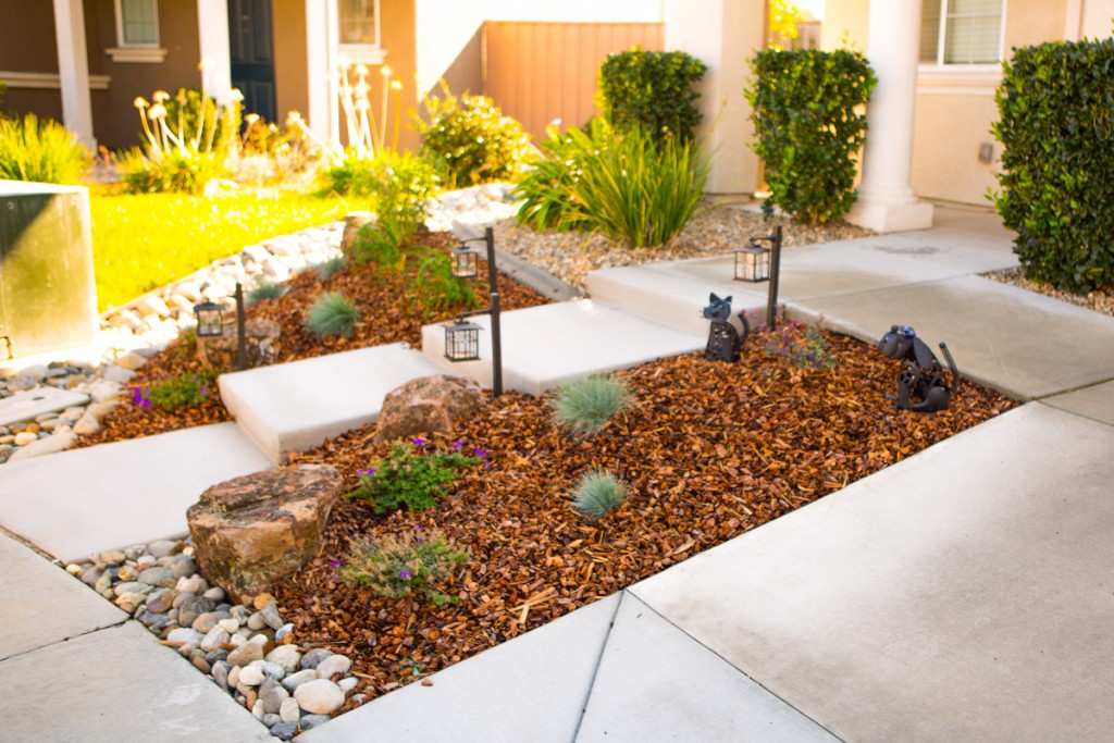 Landscaping Drought Areas
