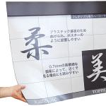 Flexible Display Using Printing Technology