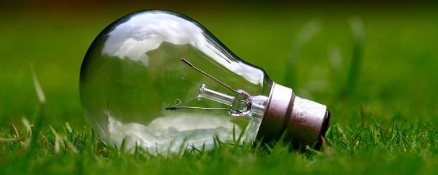 light bulb, decisions, career, success