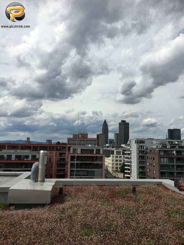 Blick auf die Frankfurter Hochhäuser