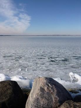 Pancake ice on Lake Mendota.