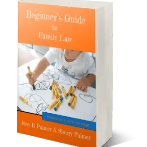 Book - Beginners Guide to Family Law by Ron B Palmer