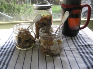 tropical_granola2