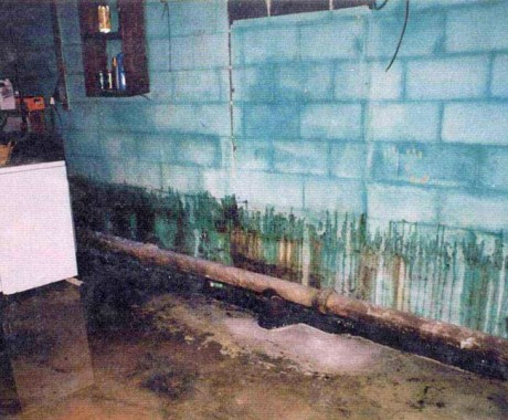 7 Proactive Ways to Stop Basement Leaks in Your Columbia, SC, Home
