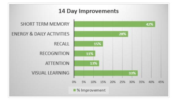 HFL's Body Brain Energy Improvement Graph