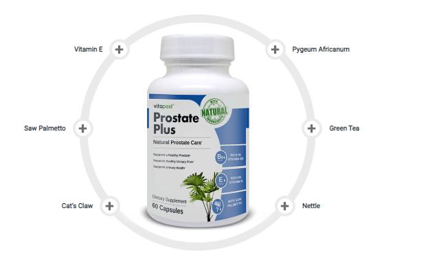 Prostate Plus Ingredients