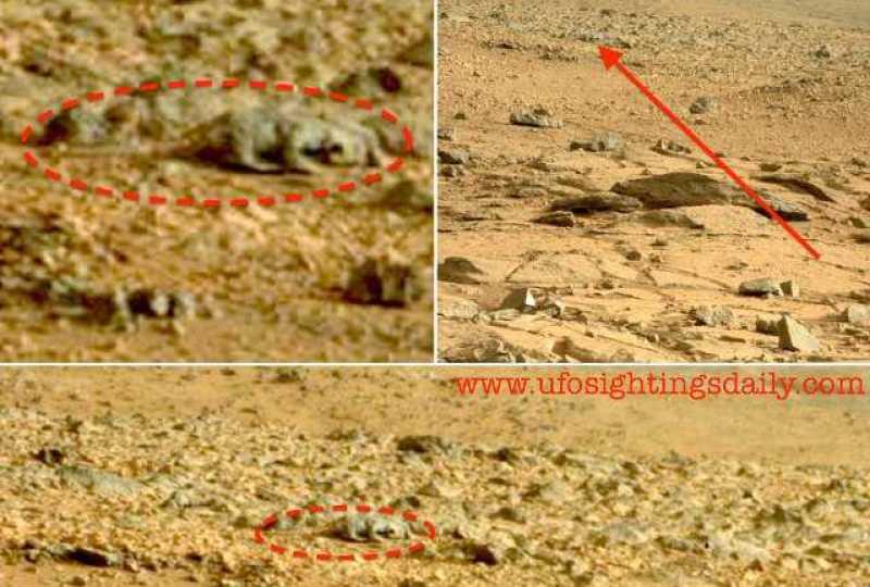 Curiosity Rover Spots A Rat/Lizard Alien On Mars