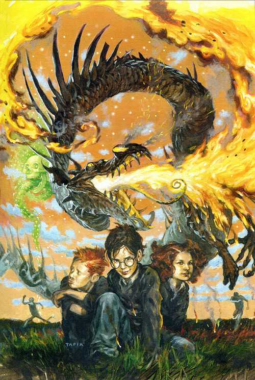 Awesome Harry Potter Covers