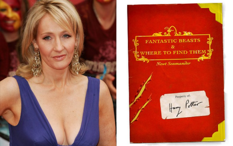 Another Harry Potter movie planned?
