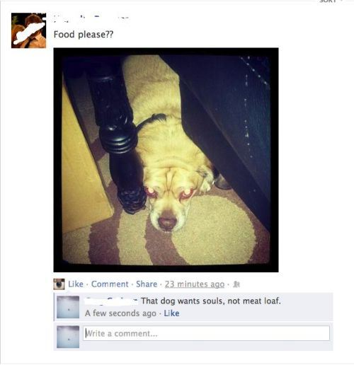 Brilliant Responses to Stupid Facebook Comments