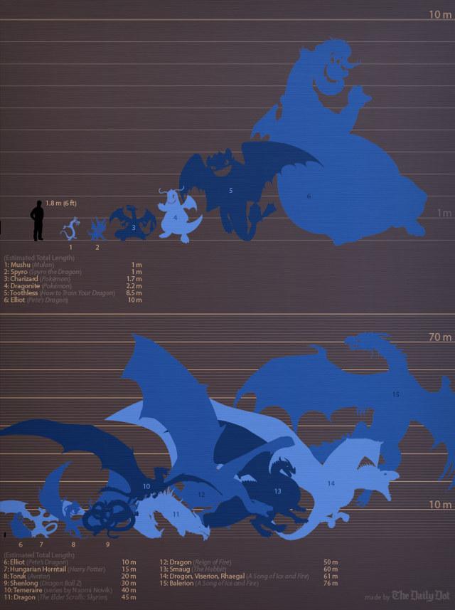 Visual Comparison Of Fantasy Dragon Sizes