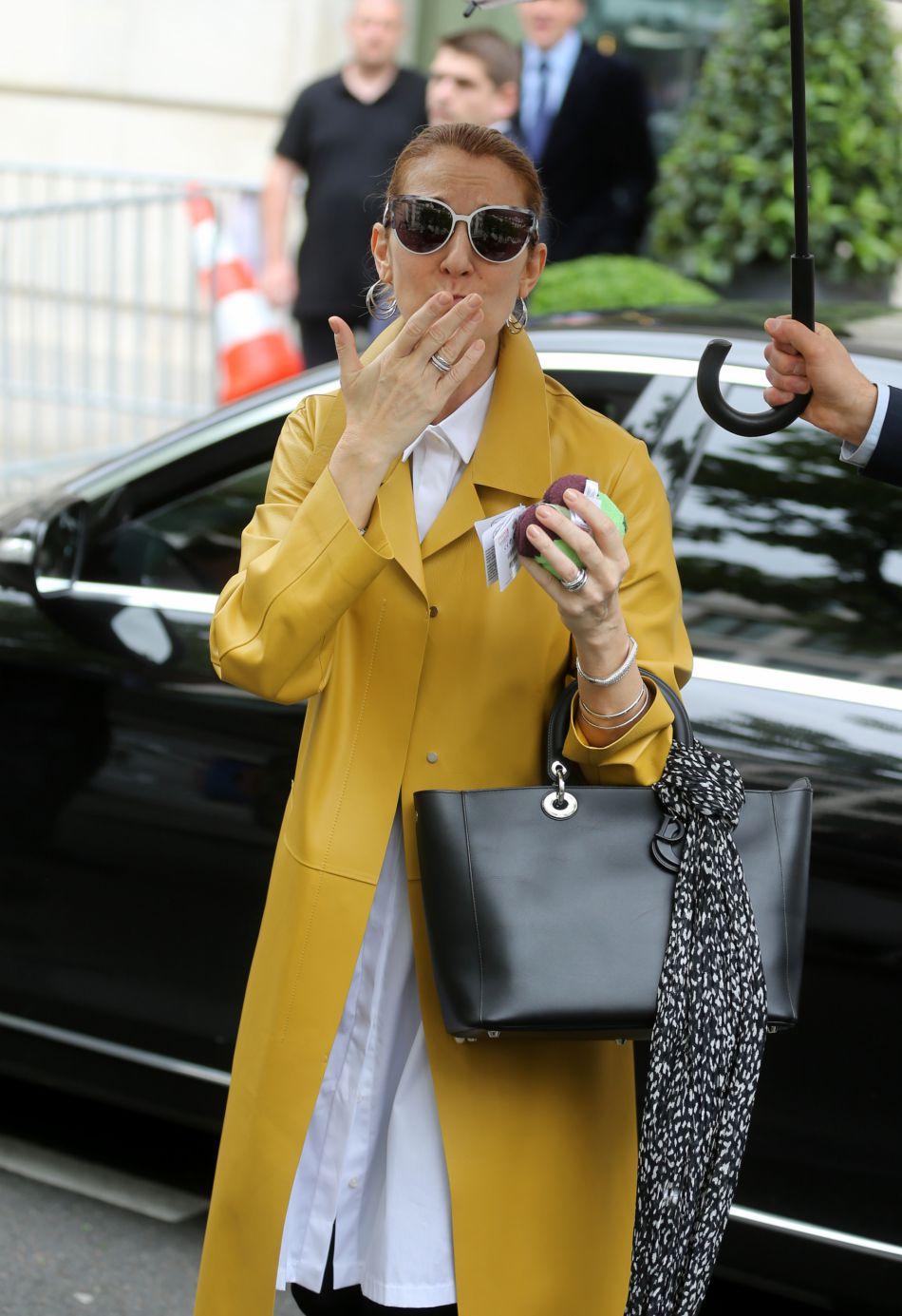 Céline Dion : ses enfants se moquent de son nouveau look