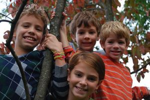children-climbing-a-tree