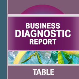 Business Diagnostic Report cover