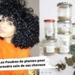 Les poudres de plantes pour prendre soin de ses cheveux