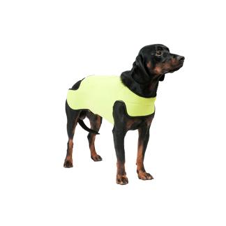 Dogtech Retriver Yellow