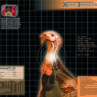 X-RAY TARGETS, KALKUN 6 PK.