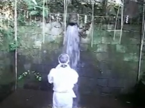 YouTube「清龍寺不動院 滝行」から引用