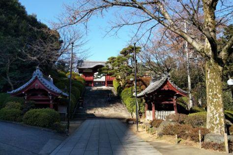 奥の階段上にある護国寺不老門