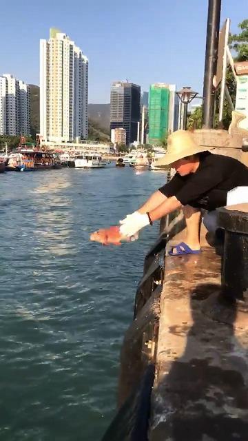 敬虔な佛教徒(曹洞宗)で魚を放生する、当社FJ NEWS代表・江東良一
