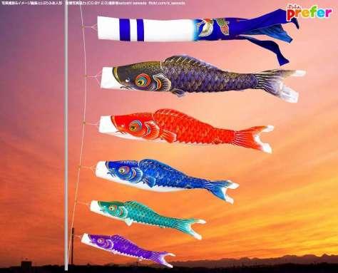 4500種を超えるこいのぼり総合サイト「鯉のぼり専門店Prefer」から引用