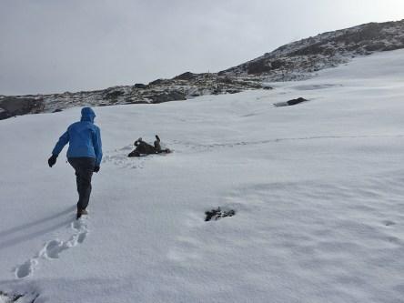 Fresh snow > 300m ;)