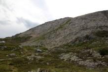 The grassy pitch where the path runs