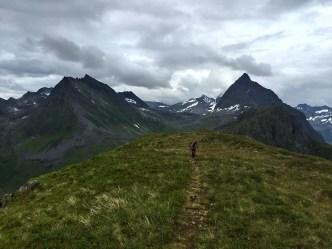 Along the ridge...