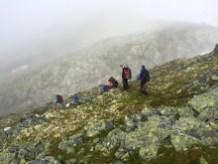 A small drop on the ridge