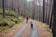 On bike, while it's still autumn...