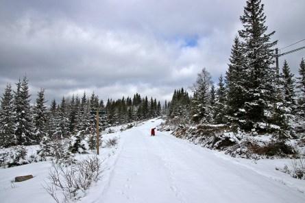 On skis