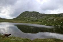 Looking back on Grottehovda