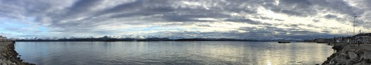 View from Molde harbour