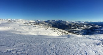 Gorgeous snow!