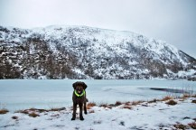 Passing lake Svartevatnet