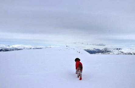 Towards the summit...