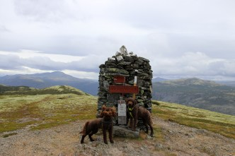On top of Haldorpiggen