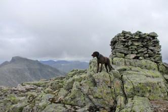 On top of Kyrkjenibba. Again.